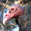 September 24, 2007